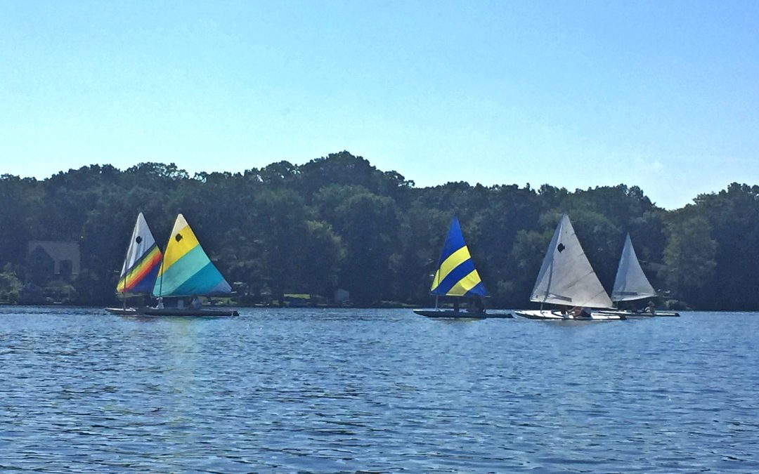 Sunfish Cup Race