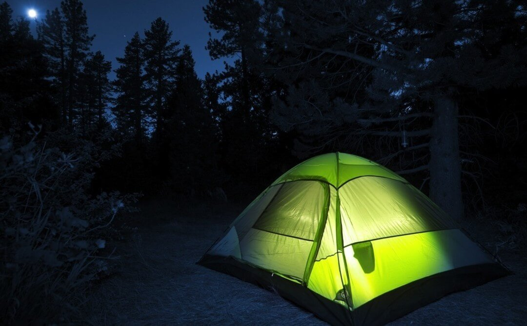 A green tent in the woods under a night sky.