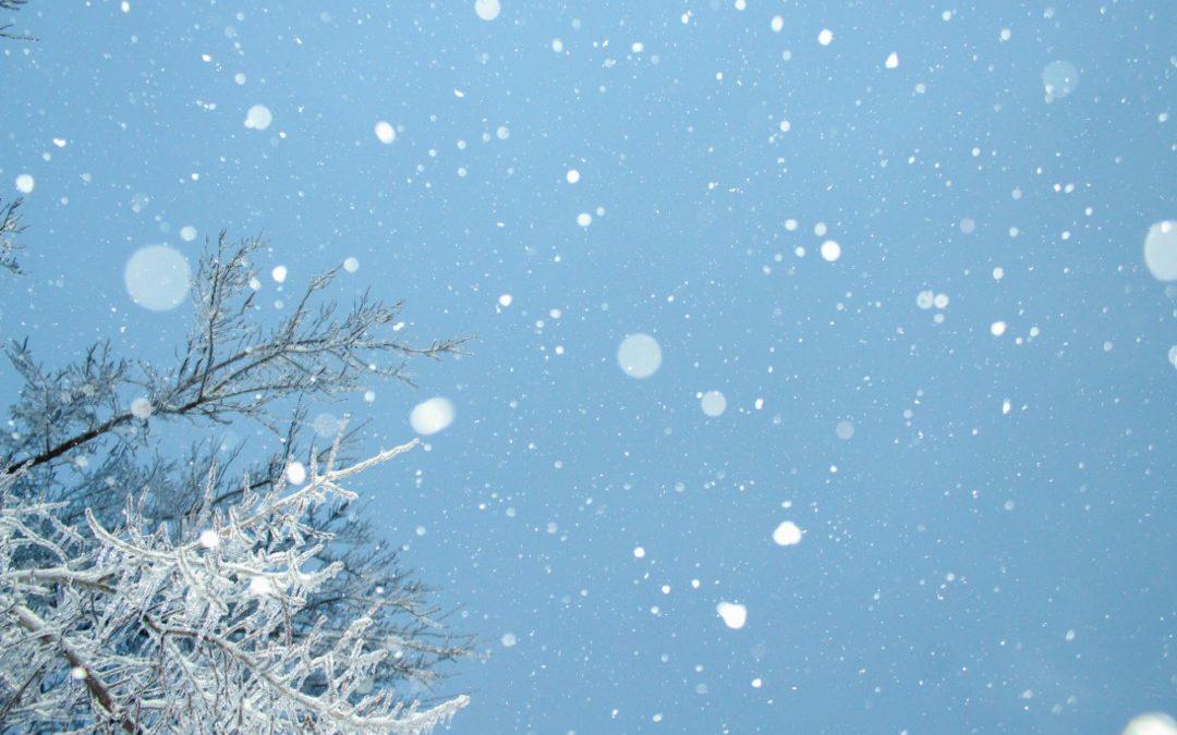 CLPO Update | December '19